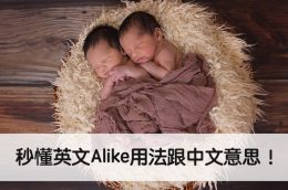 alike 用法 中文意思